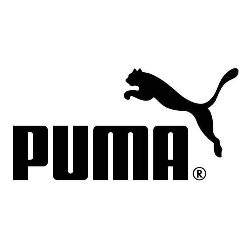 61% off on PUMA Men's IGNITE NETFIT Running Shoes