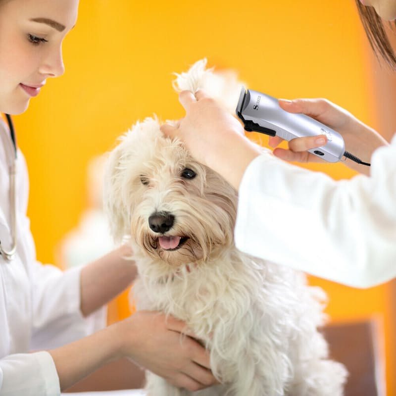 Professional Pet Hair Clipper