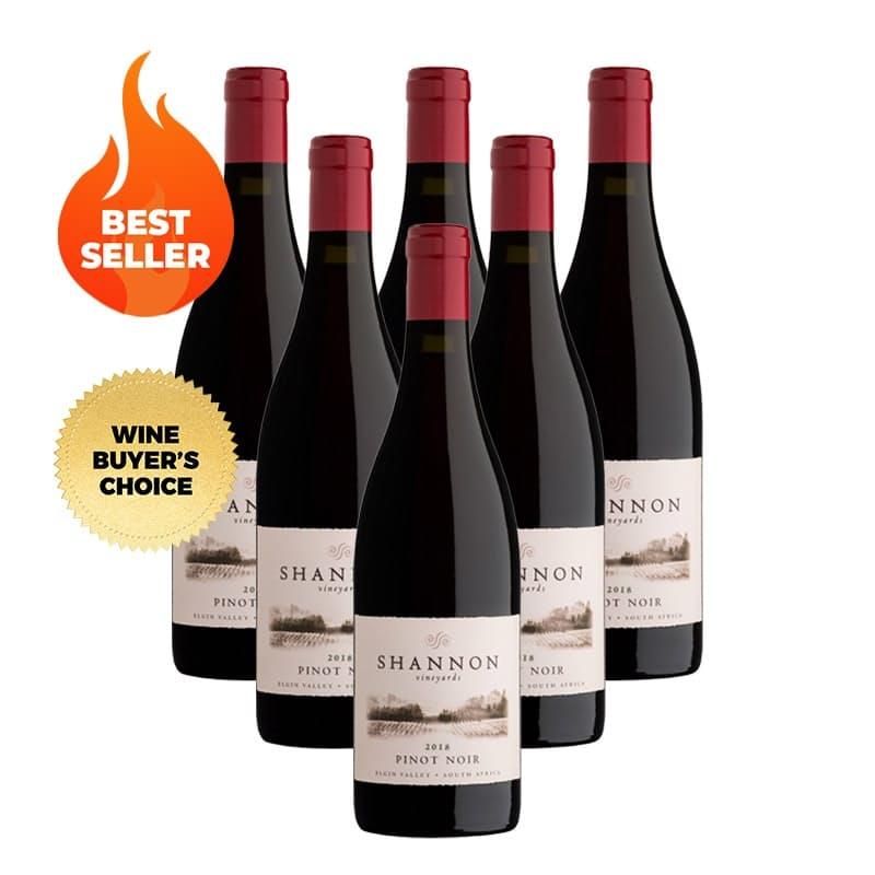 Elgin Pinot Noir 2018 (R99.83 per bottle, 6 bottles)