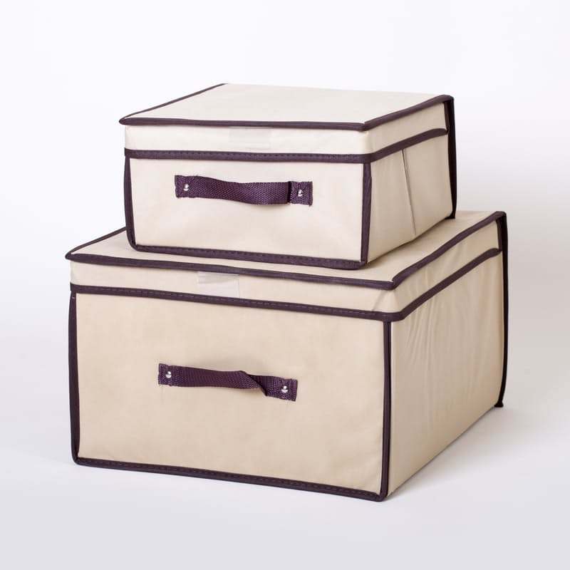 Set of 2 Collapsible Storage Boxes