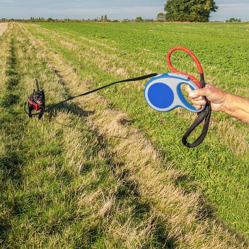 5 Metre Retractable Dog Leash