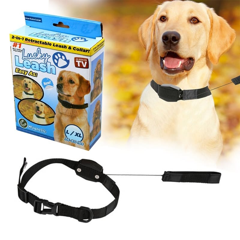 2-in-1 Magnetic Collar with Retractable Leash