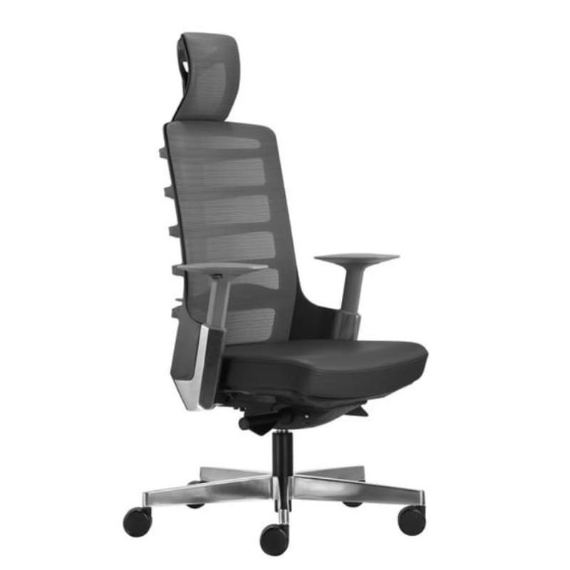 Spinelly Ergonomic Office Chair