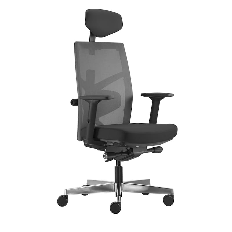 Tune Ergonomic Office Chair