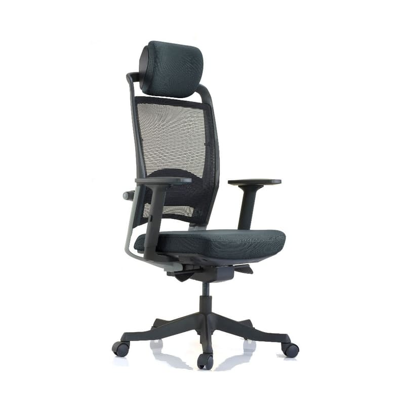 Fulkrum Ergonomic Office Chair
