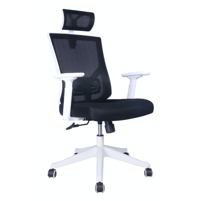 Ergonomic High Back Office Chair - White
