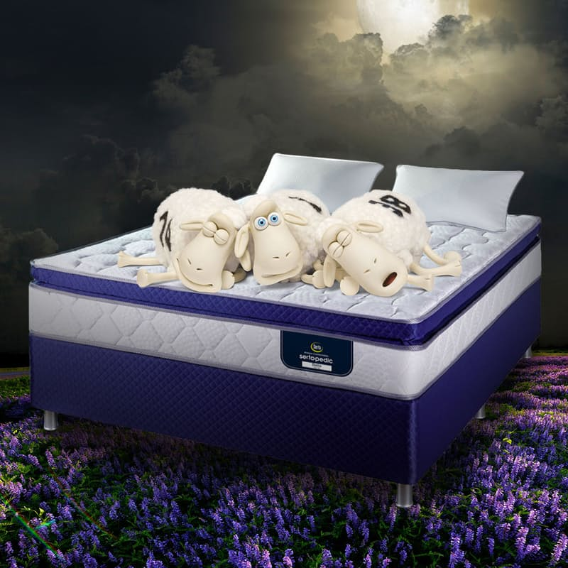 SertaPedic Bella Continuous Coil Technology Pillow Top Flip Free Bed Set (2 High Density Memory Foam Pillows and a Waterproof Mattress Protector Included)