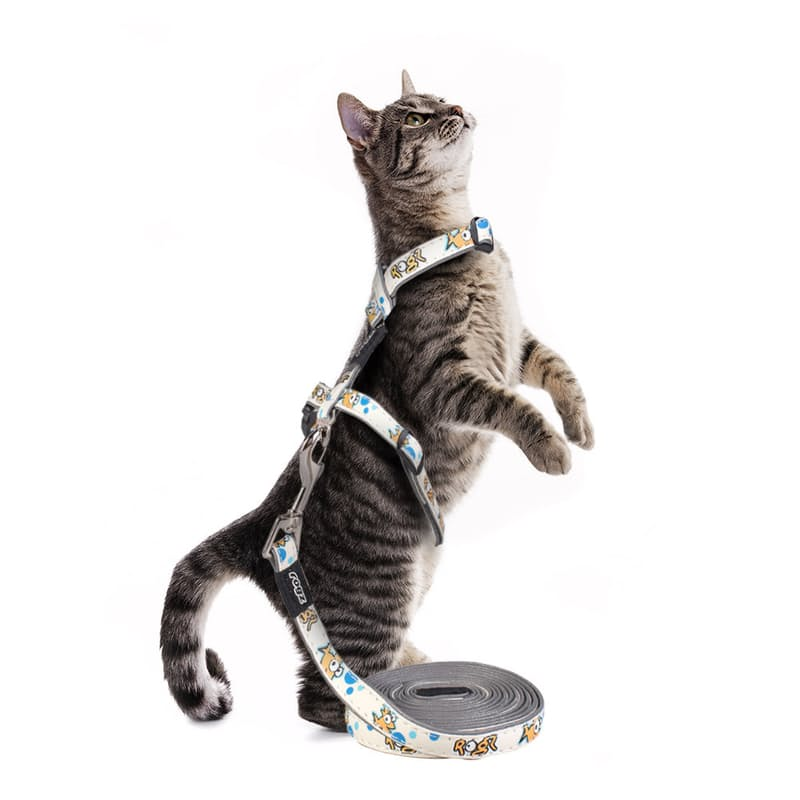 GlowCat Cat Reflective Harness and Lead Set