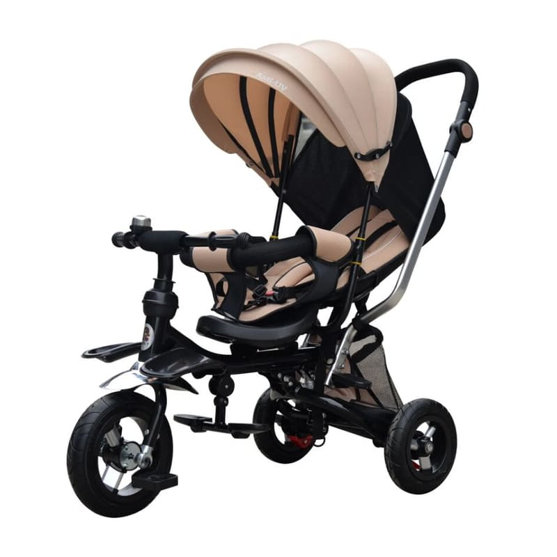 Trendsetter 5 in 1 Canopy Kids Tricycle