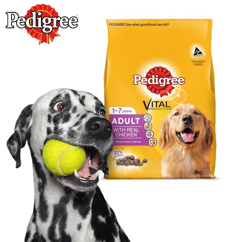 8kg Adult Dry Dog Food