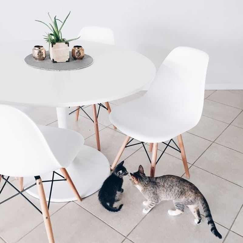 Set of 4 Eames Replica Oscar Chairs