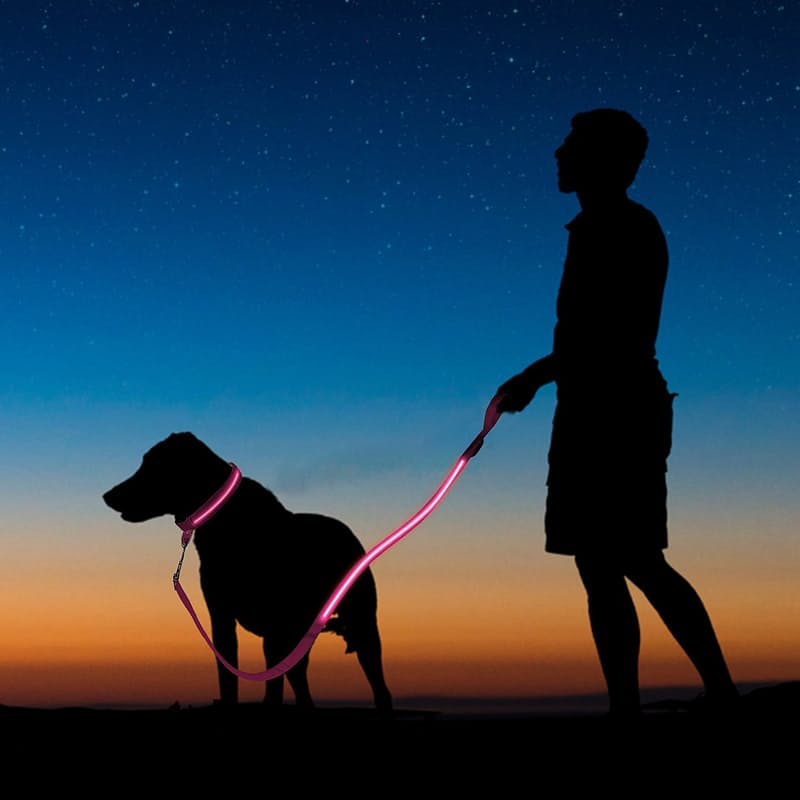 LED Dog Collars & Lead Or Harnesses & Lead (Different Sizes Available)