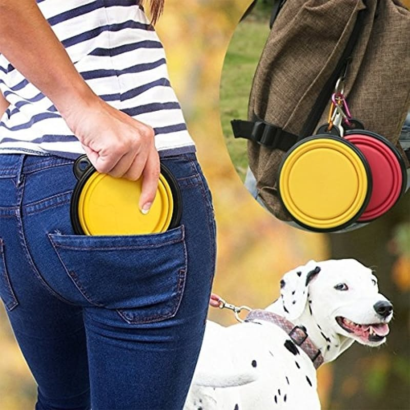 Collapsible Pet Bowl & Carabiner Clip