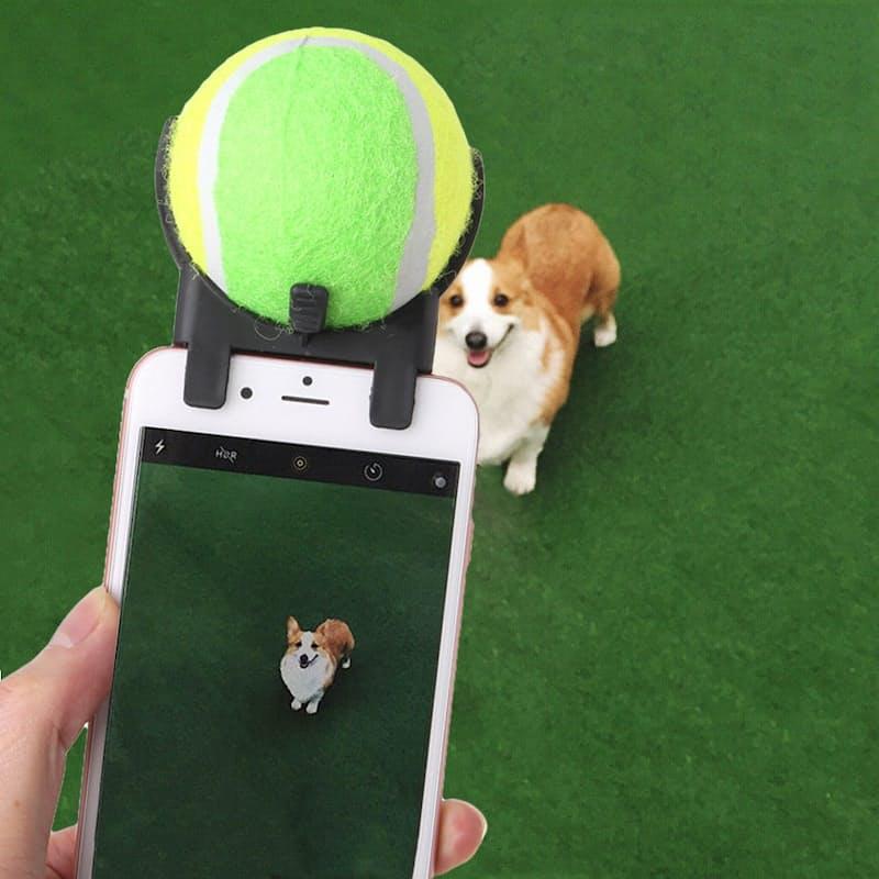 Dog Selfie Toy for Smartphones