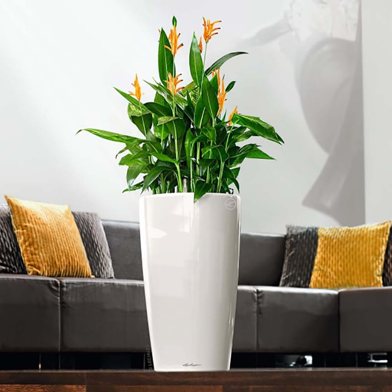 31 off on lechuza rondo 40 premium indoor outdoor self watering planters 75cm high